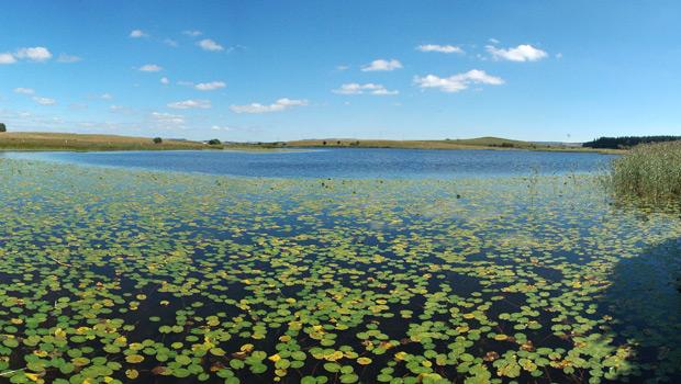 Lac des Salhiens